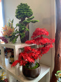 BON001 Artificial High Quality Bonsai / Fake Bonsai 60-70cm Tall Australia | ARTISTIC GREENERY