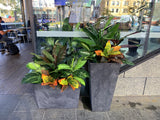 The Shoe Bar Cafe - Hanging Centrepieces & Artificial Plants for Cafe
