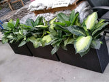 Beaumonde Catering - Artificial Plants in Troughs