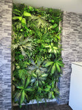Northbridge Chiropractic - Vertical Garden Feature Wall