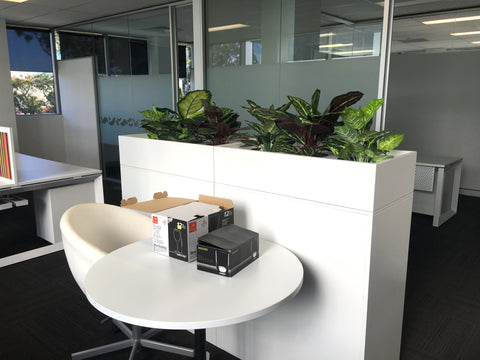office planter boxes. coterra environment - dumb canes for tambour units office planter boxes o