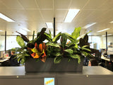 CHC Helicopter - Greenery Wall & Planter for Cabinets
