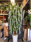 T0070-210cm artificial wisteria tree white flowers