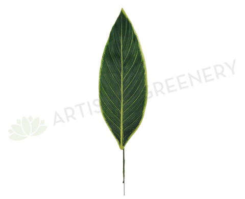 LEA0005 Cordyline Leaf Real Touch Lge 49cm