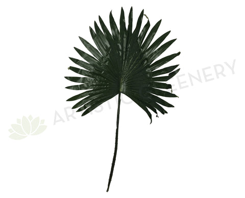 LEA0013 Single Fan Palm Leaf 78cm Green