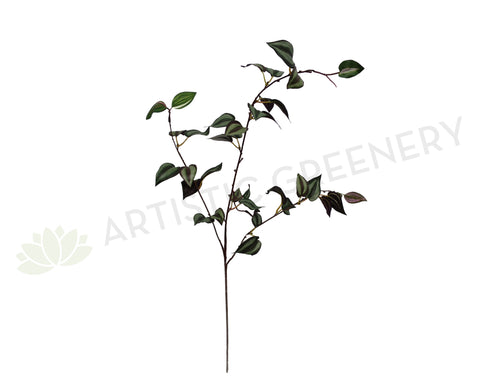LEA0023(a) Wandering Jew Spray 84cm