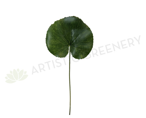 LEA0040 Single Lotus Leaf 30cm Green