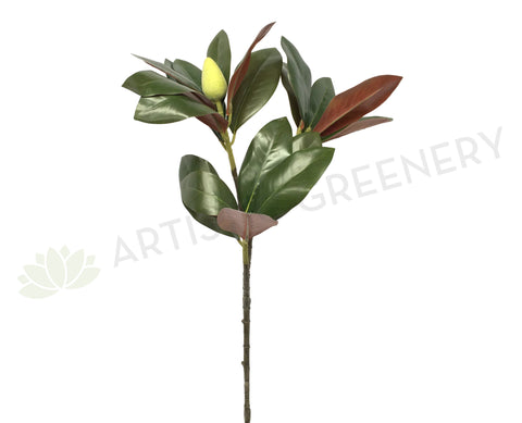 LEA0046 Magnolia Foilage / Leave 88cm 2 Sizes