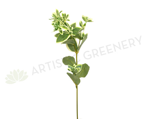 LEA0053 Variegated Seeded Greenery Spray 66cm