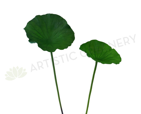 LEA0073 Lotus / Water Lily Single Leaf( Real Touch Quality) 2 Sizes