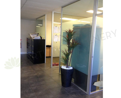 Losugen - Artificial Trees in Pots Throughout the Office