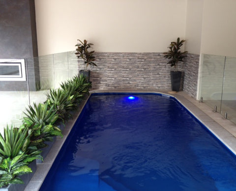 Home Interior Design and Installation - Indoor Pool Area - Artificial Plants