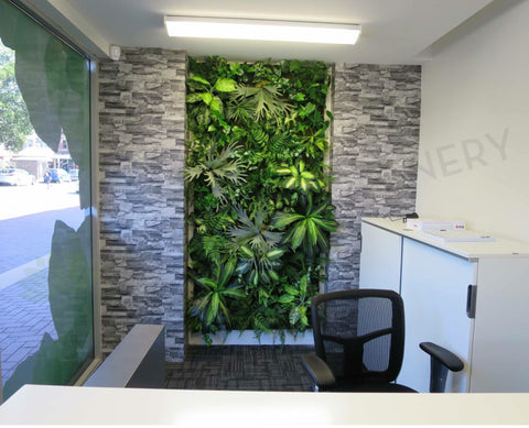 northbridge chiropractic vertical garden feature wall - Wall Garden