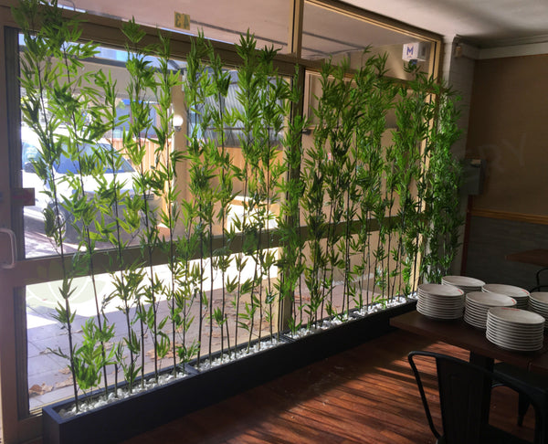 Indoor Garden Apartment Window