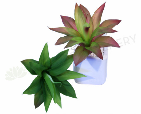 SP0126 Small Dracena Real Touch 22cm