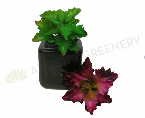 SP0127 Small Succulent Real Touch 12cm Green / Red