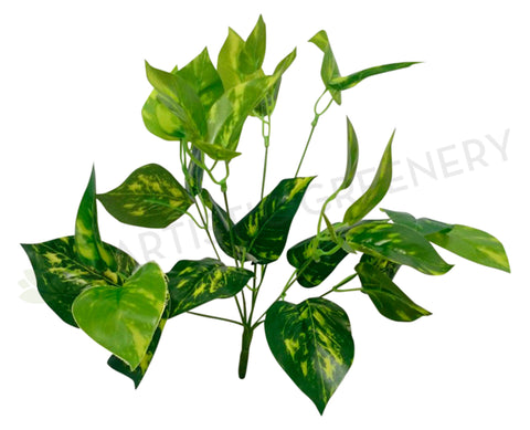 SP0145 Golden Pothos Bunch 35cm Real Touch Leaves