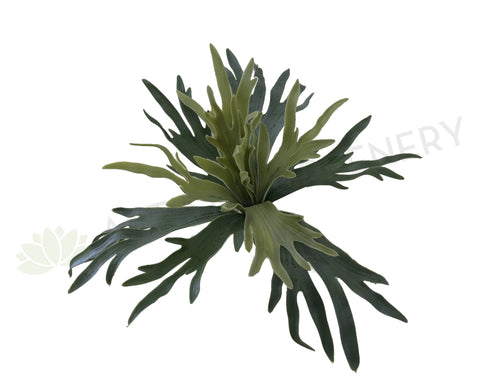 SP0148SML Staghorn Fern 28cm Real Touch Quality