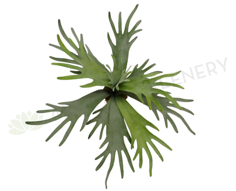 SP0148 Stag Horn Fern Large (Real Touch) 50cm