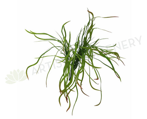 SP0166 Weeping Greenery 50cm