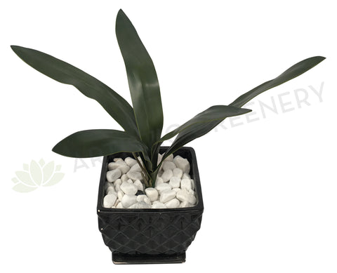 SP0208 Orchid Leaves 40cm Real Touch