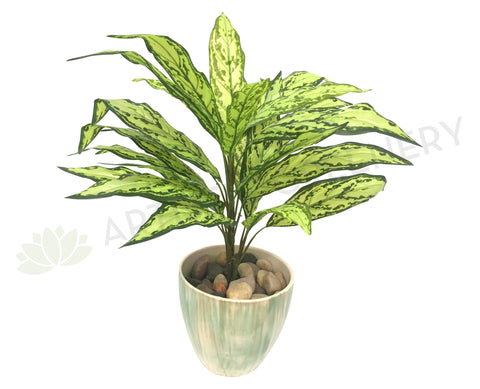 SP0209 Calathea Plant 68cm Real Touch