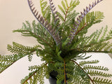 SP0259 Fern with Fronds 34cm 2 Styles