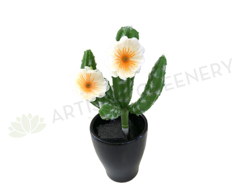 SP0281 Finger Cactus with Flowers 20cm