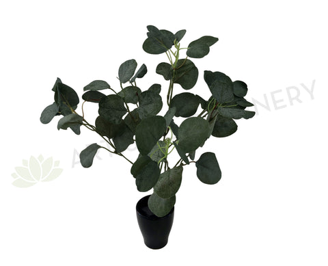 SP0283 Silver Dollar Eucalyptus Bunch 45cm