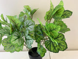 SP0359 Faux Small Calathea Plant 37cm 2 Styles | ARTISTIC GREENERY