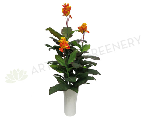 T0030 Canna Lily Plant Yellow Flowers 170cm