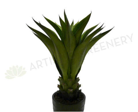 T0035MED Giant Aloe VeraPotted 80cm Real Touch
