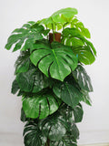 T0058 Split Philo Totem Real Touch Leaves 110cm zoom