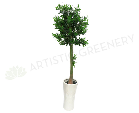 T0072 Olive Tree with Black Olives 150cm SALE