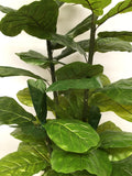T0106L Fiddle Fig Tree Large Real Touch Leaves 190cm