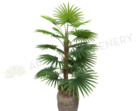 T0107-100 Ruffled Fan Palm Real Touch 100cm