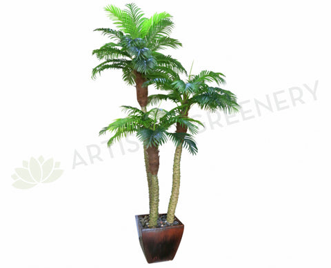T0110 Phoenix  Palm (set of 3) 300-220-170cm