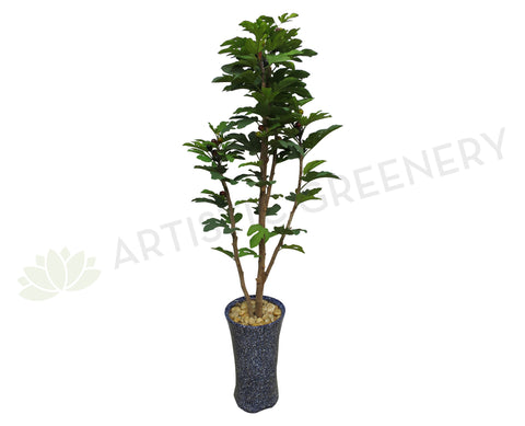 T0111 Fig Tree with Figs 170cm Real Wood Trunk