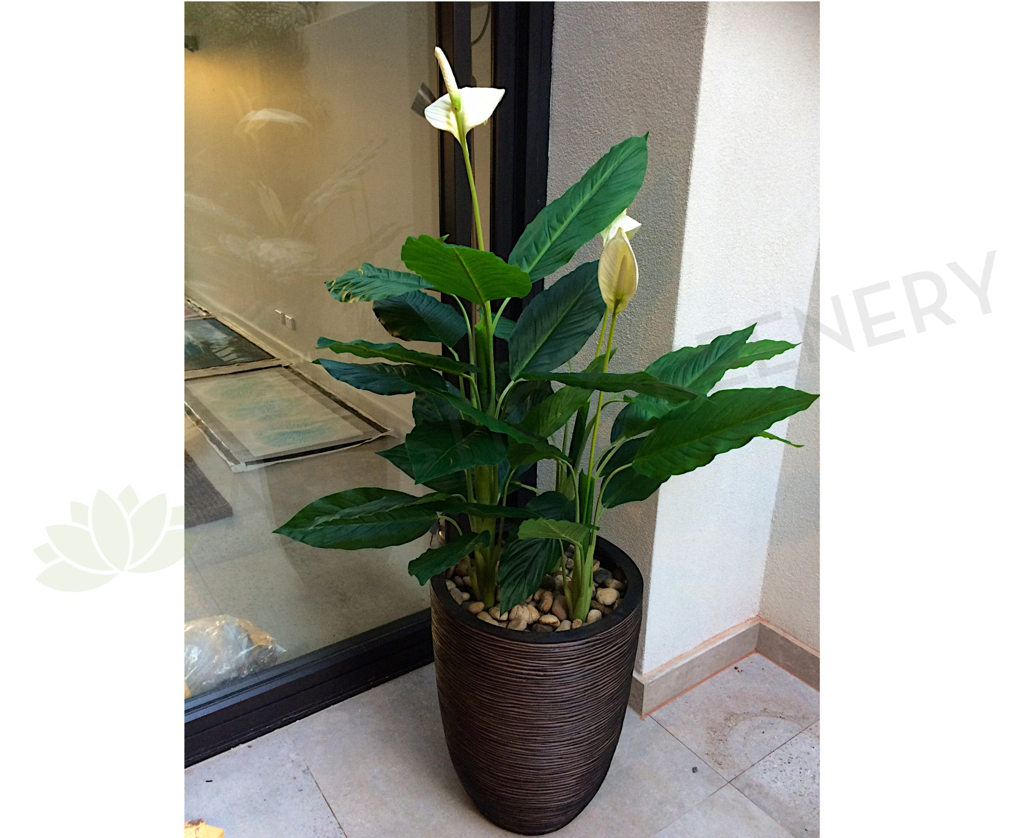 New artificial flowersplants t0115 peace lily plant 120cm white ebay new artificial flowersplants t0115 peace lily plant 120cm white izmirmasajfo