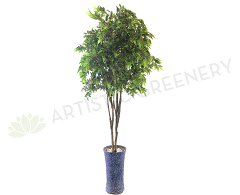 T0134 French Ficus 190cm Real Tree Trunk
