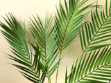 T0137 Areca Palm Branch 80cm Ultra Realistic