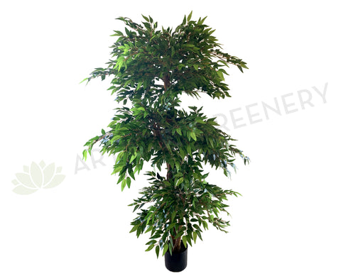 T0142 French Ficus 3 Tiers 160cm