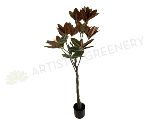 T0146 Magnolia Tree 150cm tall (65cm wide) | ARTISTIC GREENERY