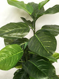 T0148 Fiddle Fig Tree Real Touch Leaves 120cm