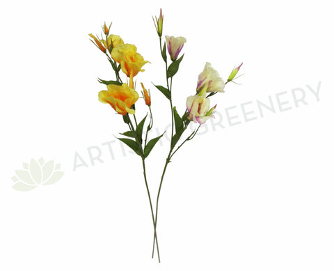 Clearance Stock -  Lisianthus Spray 80cm Orange / Puprle