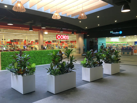 Banksia Grove Village Shopping Centre - Greenery Wall & Artificial Plants in Planters