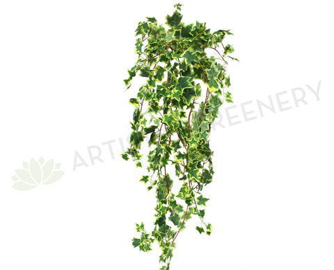 HP0049 Hanging Variegated Ivy (Large Bunch) 115cm Green SALE