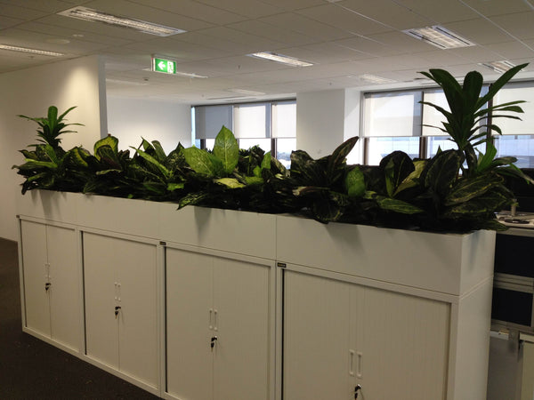 Artificial Orchid Plants