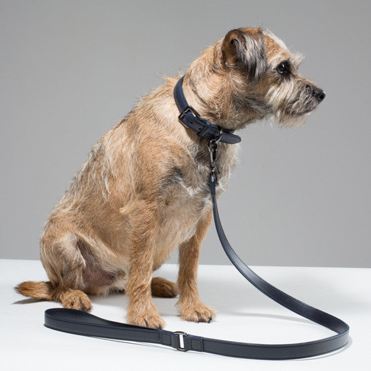 Gregory & Frank Dog Collar and lead set - French Navy
