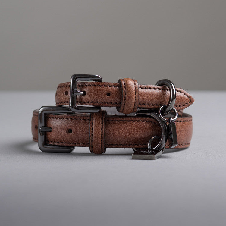 Gregory Dog Collar - Cognac